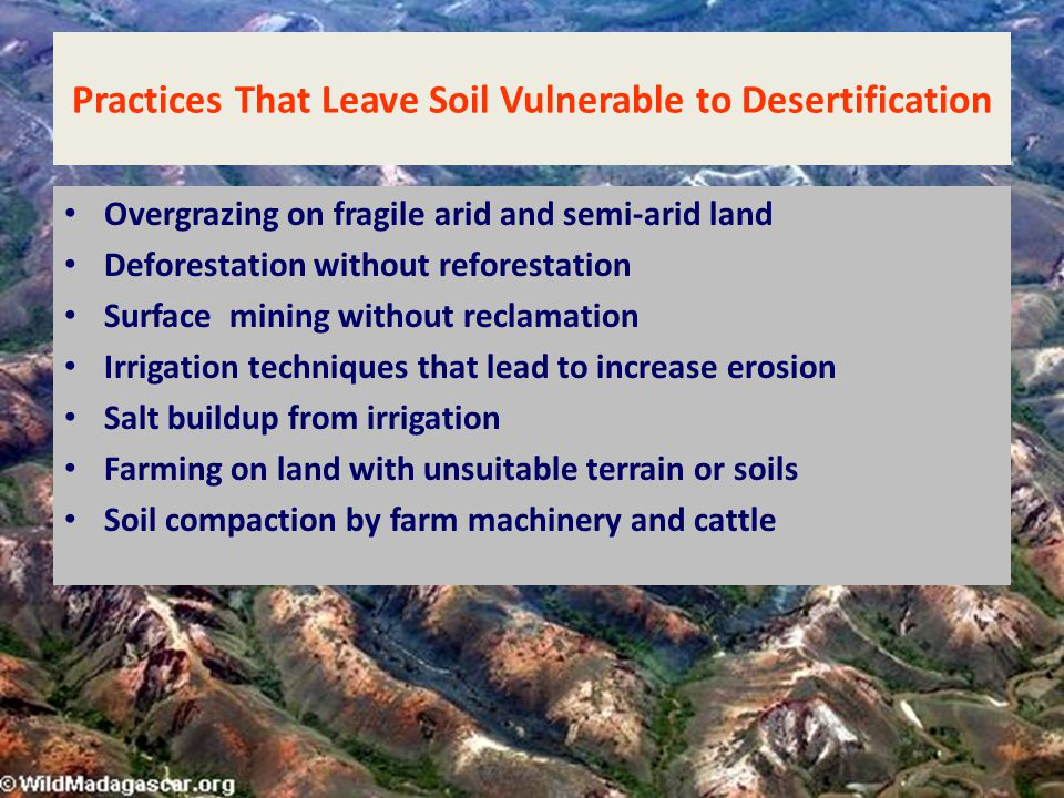 Practices That Leave Soil Vulnerable to Desertification
