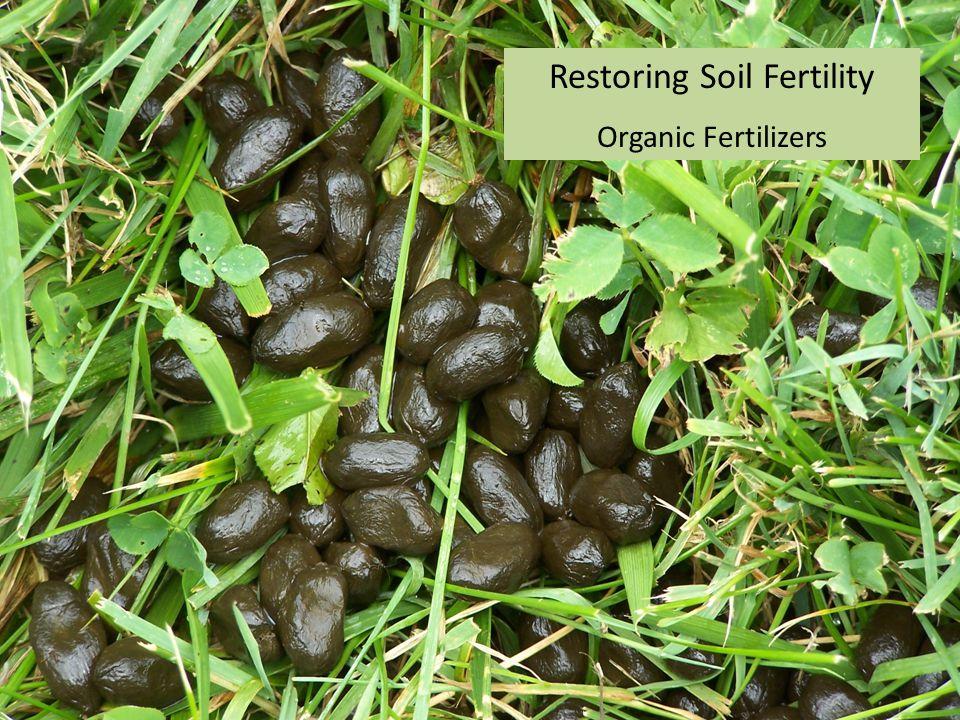 Restoring Soil Fertility