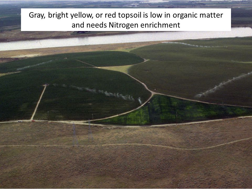 Gray, bright yellow, or red topsoil is low in organic matter and needs Nitrogen enrichment