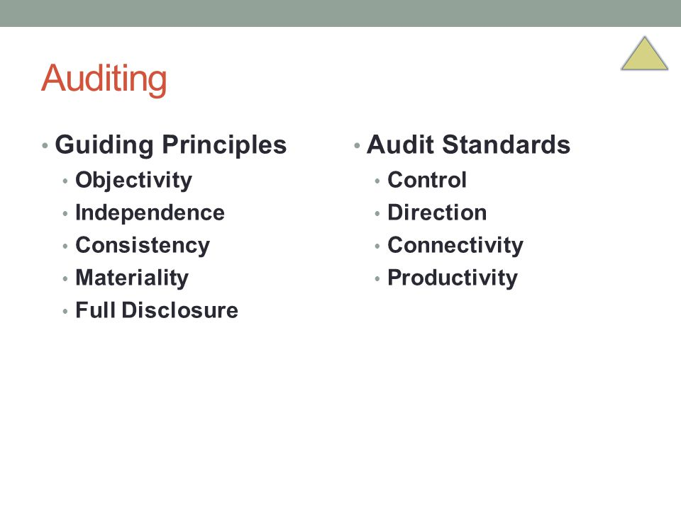 Auditing Guiding Principles Audit Standards Objectivity Independence