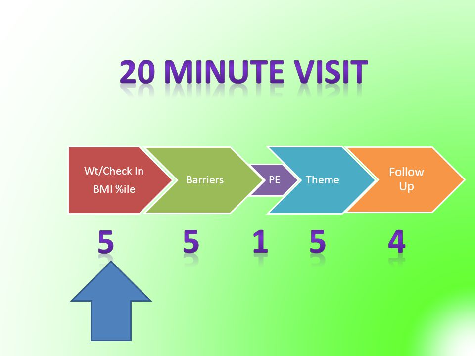 20 Minute Visit 5 5 1 5 4 Follow Up Wt/Check In Barriers Theme
