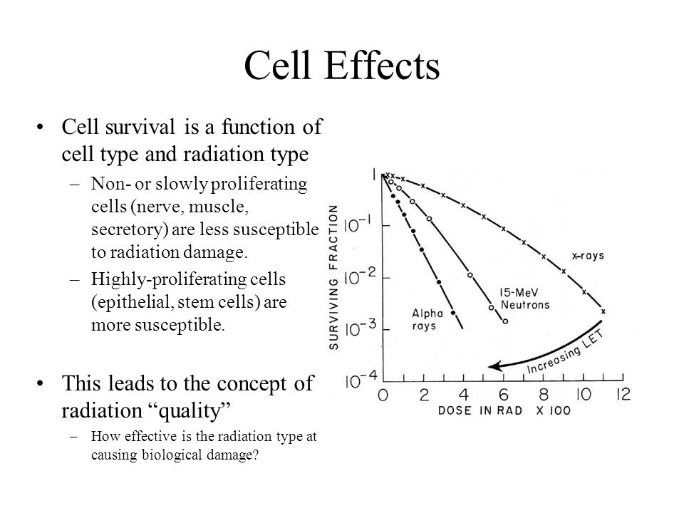 Cell Effects Cell survival is a function of cell type and radiation type.
