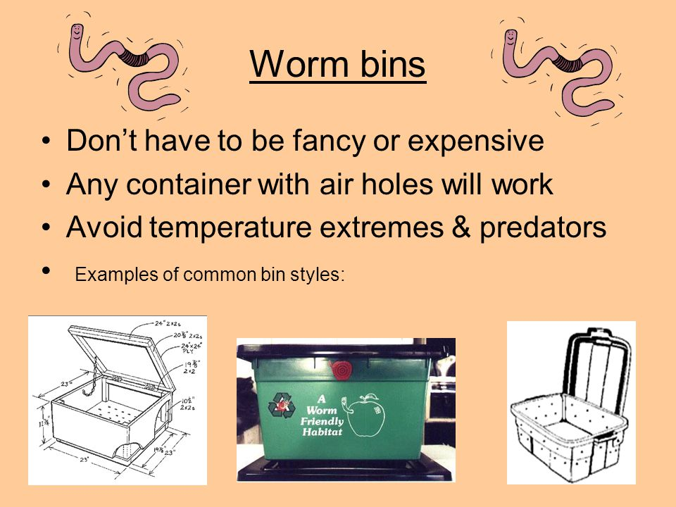 Worm bins Don't have to be fancy or expensive