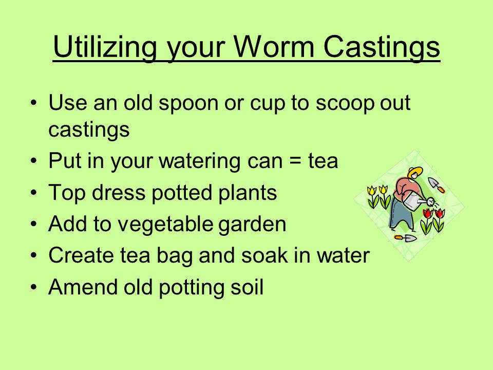 Utilizing your Worm Castings