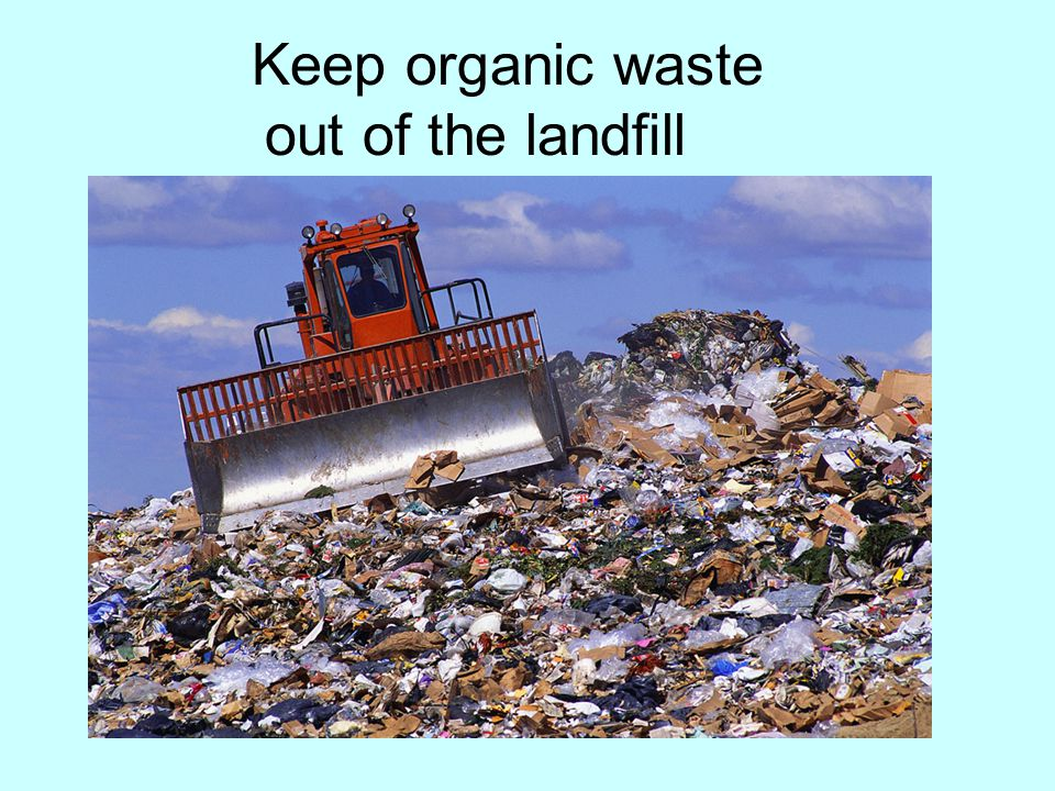 Keep organic waste out of the landfill