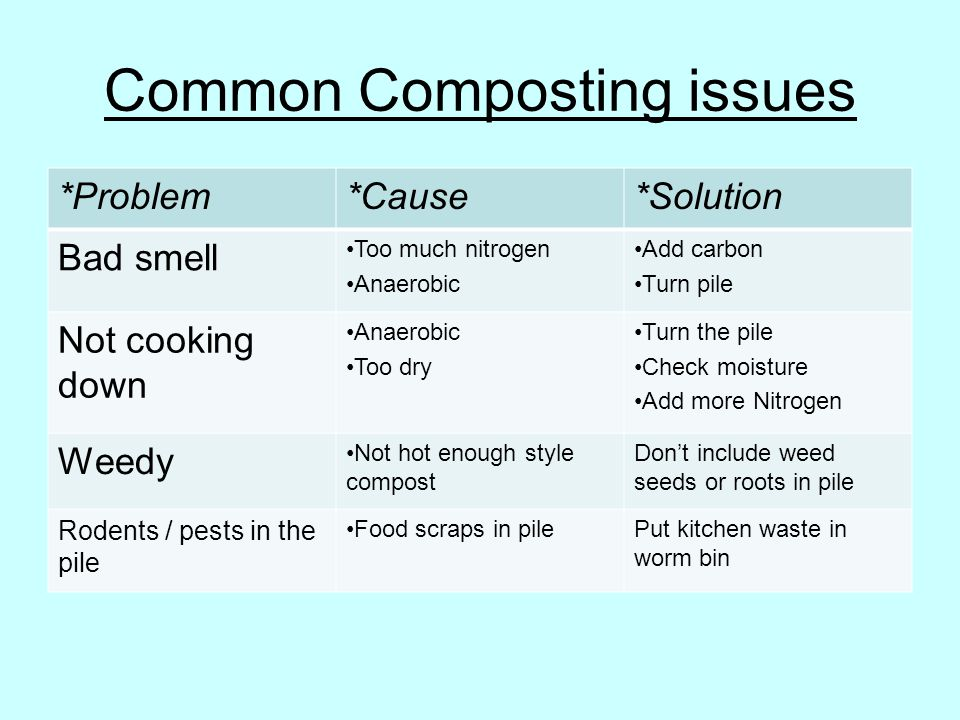 Common Composting issues