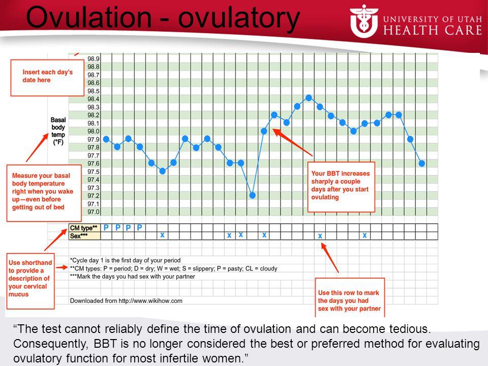 Ovulation - ovulatory