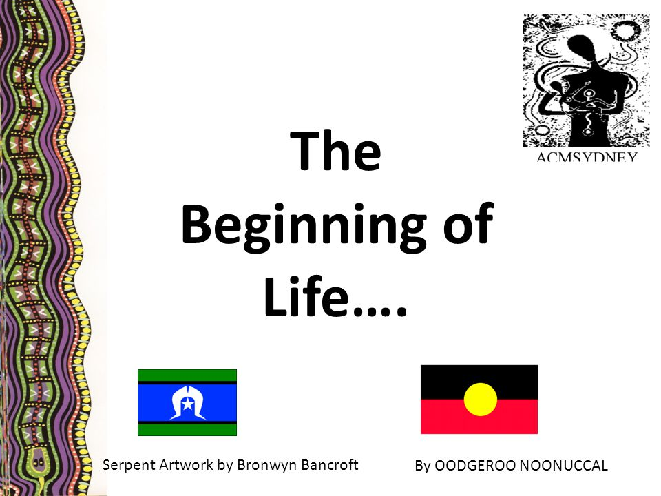 The Beginning of Life…. Serpent Artwork by Bronwyn Bancroft