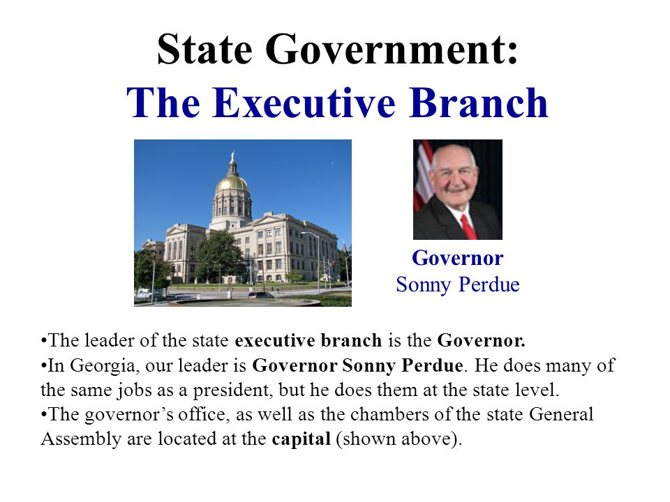State Government: The Executive Branch