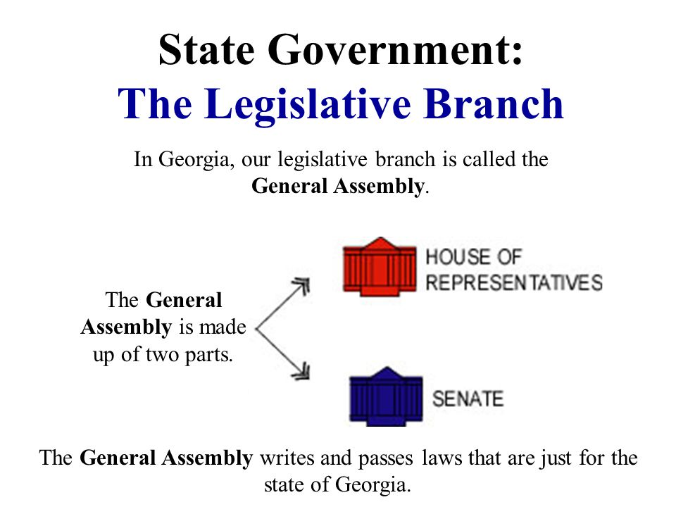 State Government: The Legislative Branch