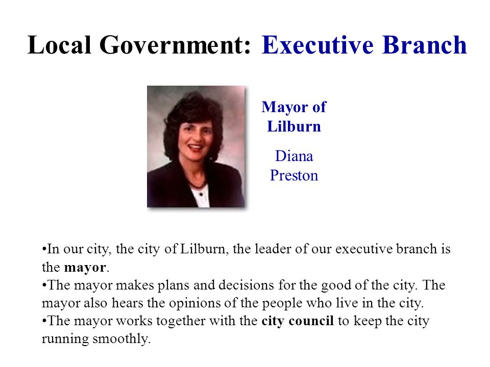 Local Government: Executive Branch