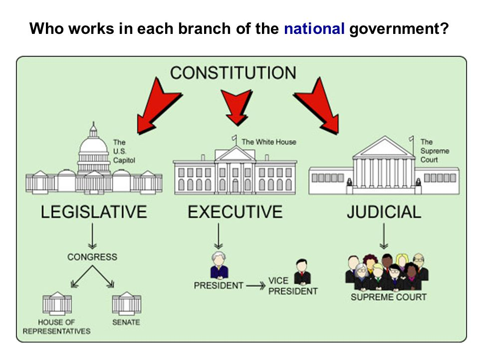 Who works in each branch of the national government