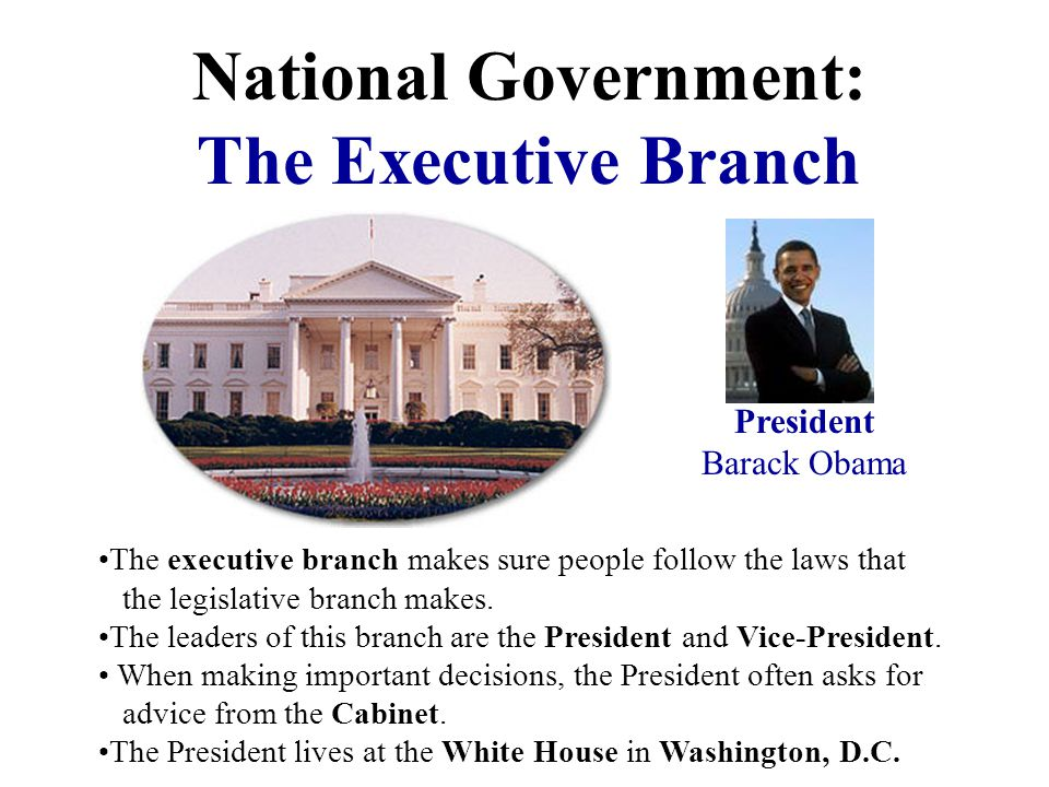 National Government: The Executive Branch
