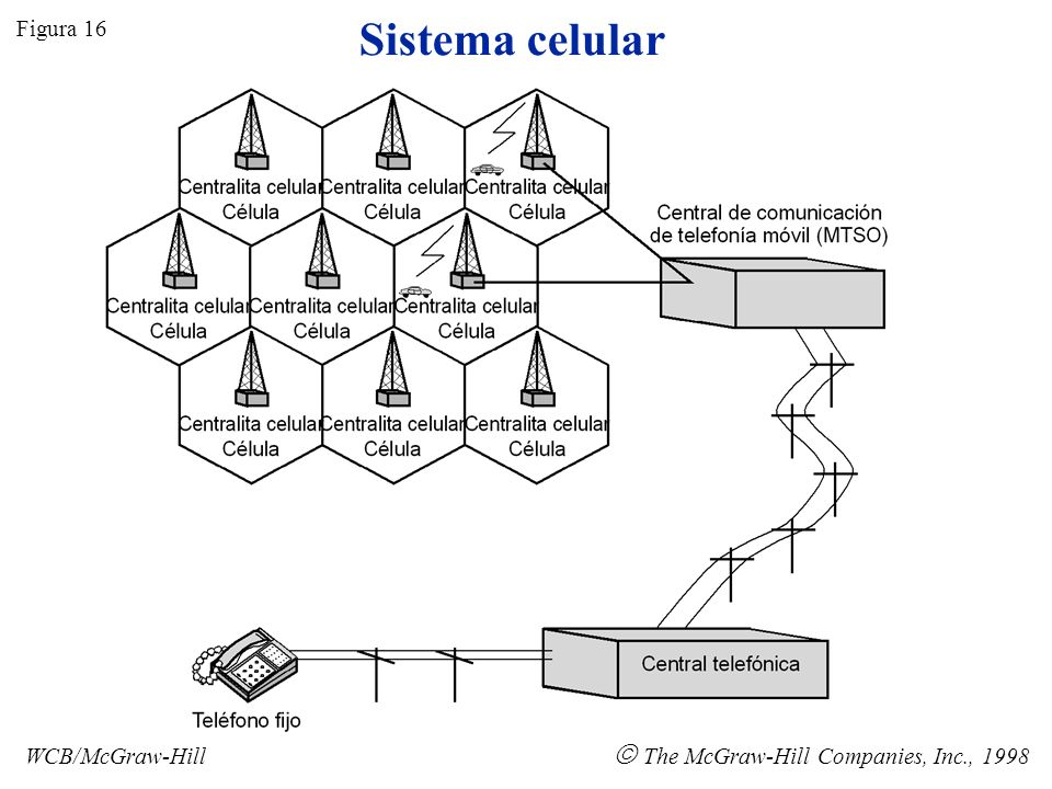 Sistema celular  The McGraw-Hill Companies, Inc., 1998 Figura 16