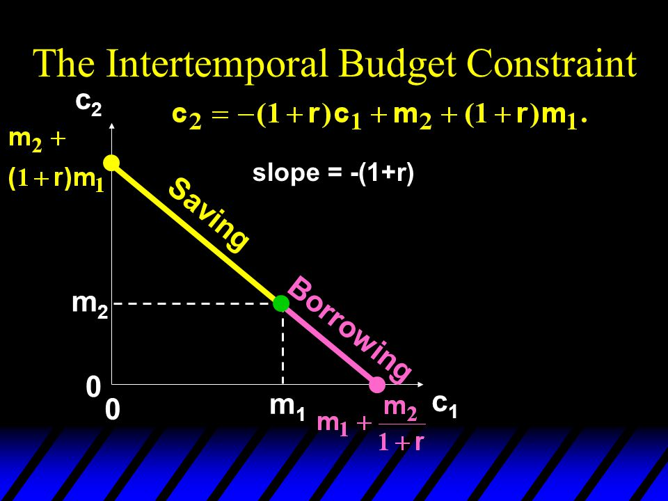 The Intertemporal Budget Constraint