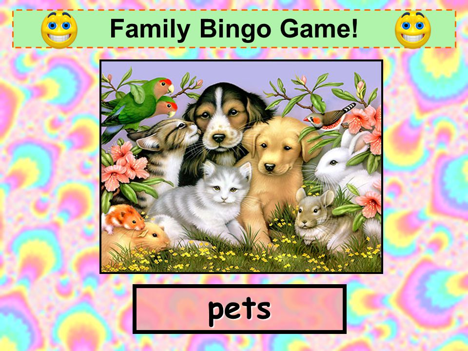 Family Bingo Game! pets