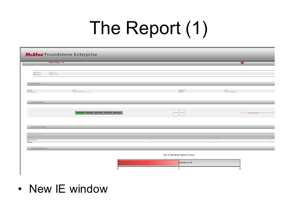 The Report (1) New IE window New IE window