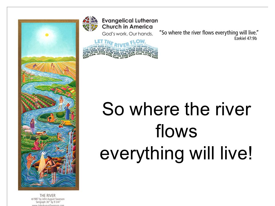So where the river flows everything will live!