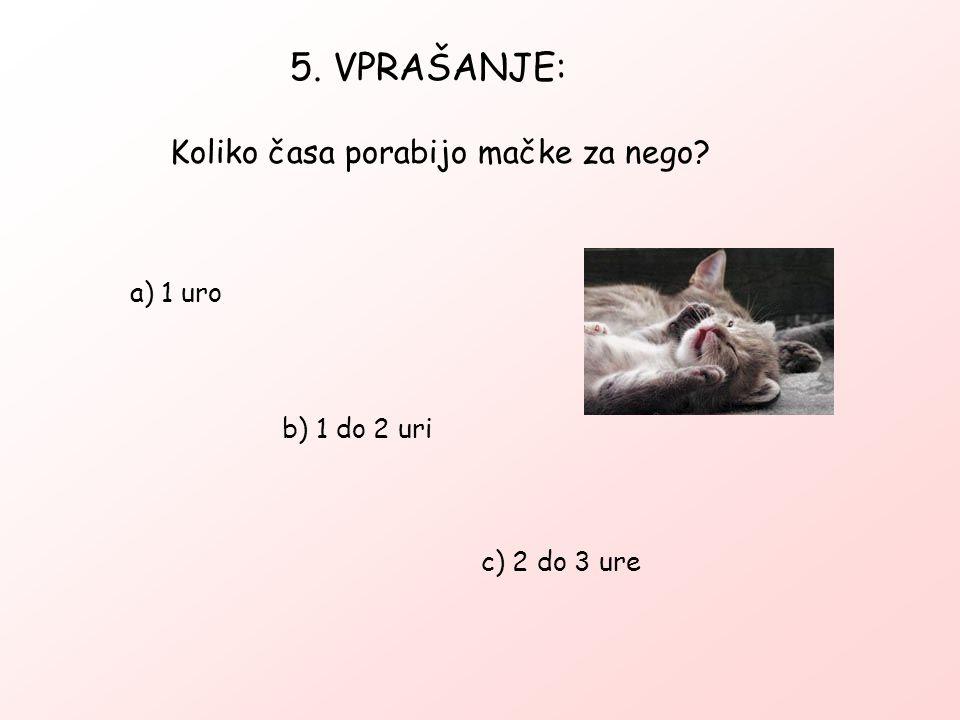 5. VPRAŠANJE: Koliko časa porabijo mačke za nego a) 1 uro