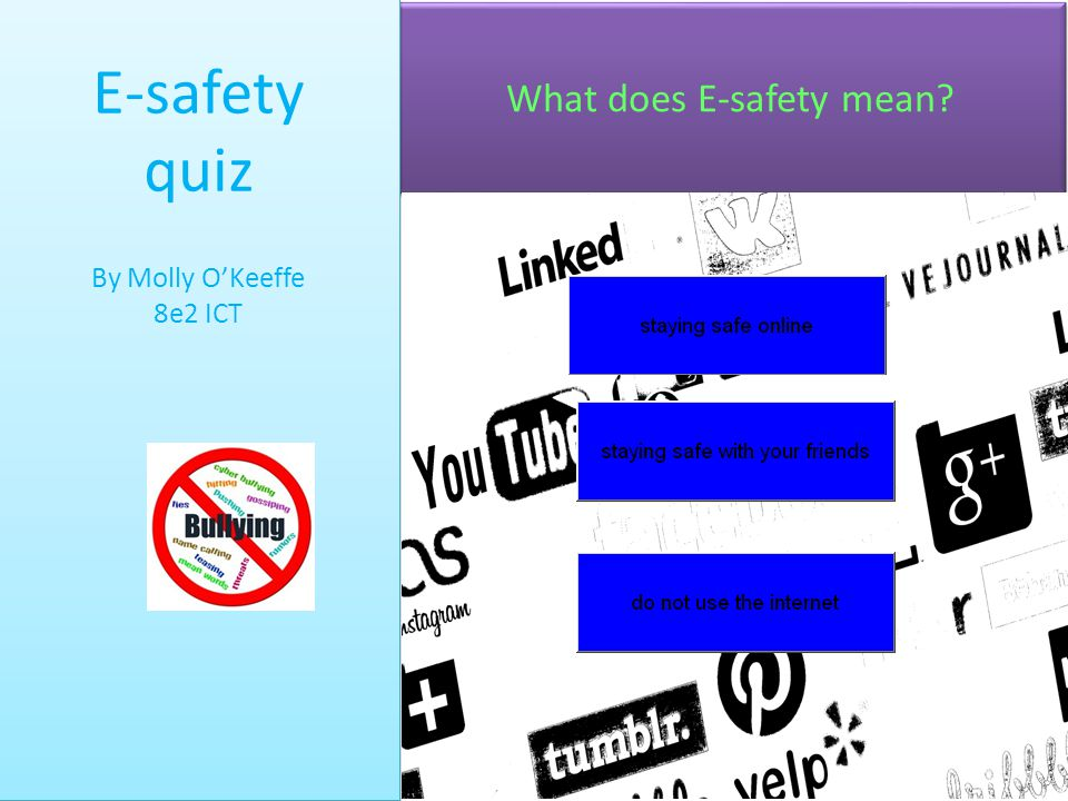 What does E-safety mean