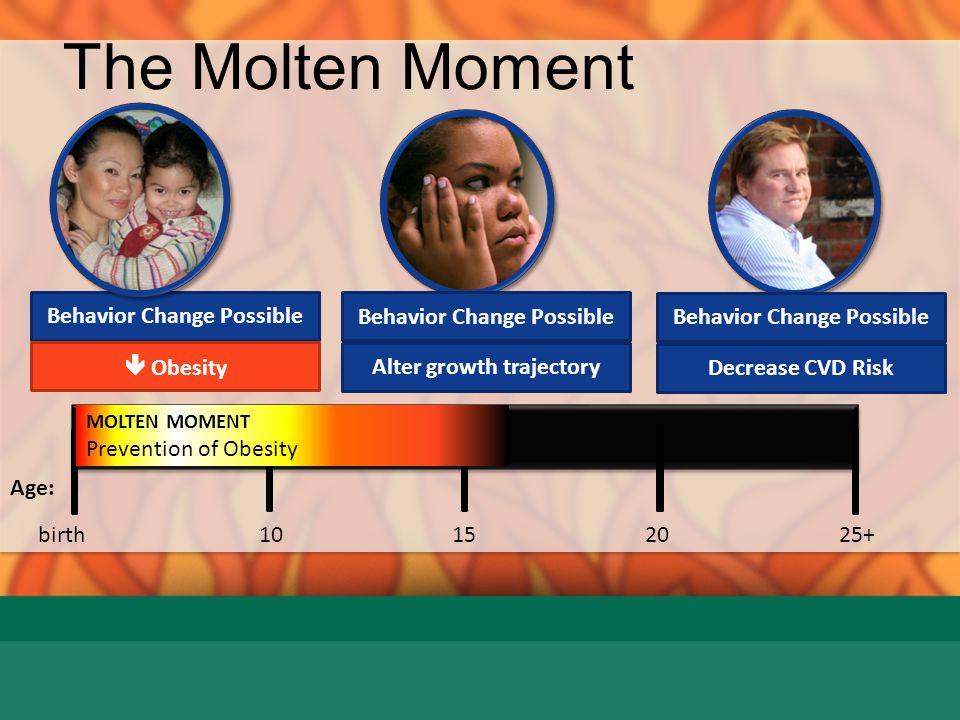 The Molten Moment Behavior Change Possible Behavior Change Possible