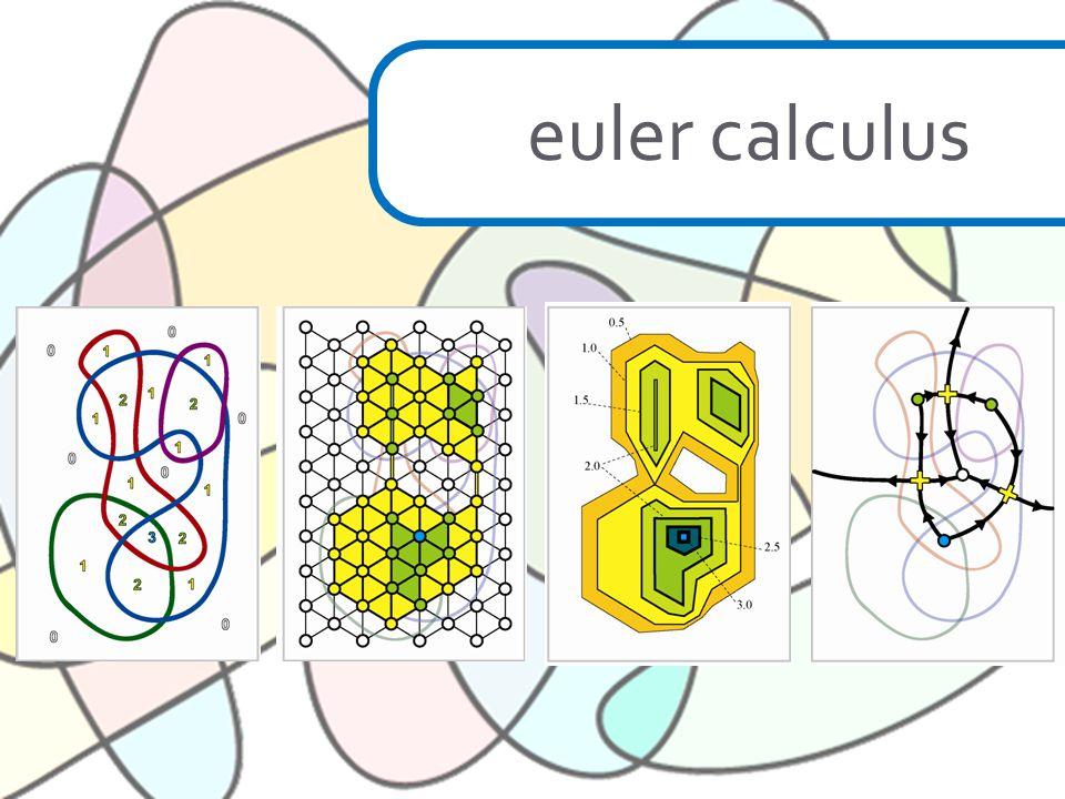 euler calculus