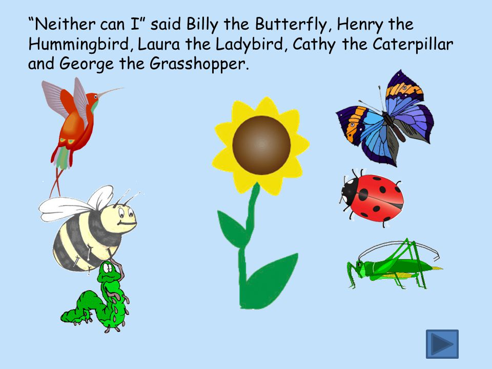 Neither can I said Billy the Butterfly, Henry the Hummingbird, Laura the Ladybird, Cathy the Caterpillar and George the Grasshopper.