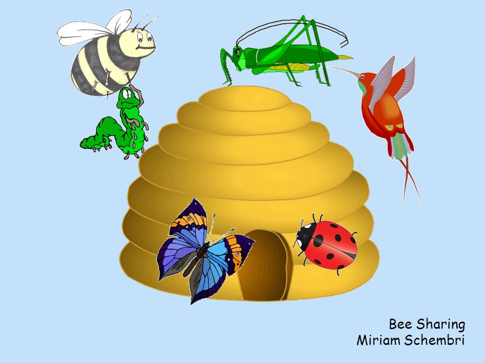 Bee Sharing Miriam Schembri