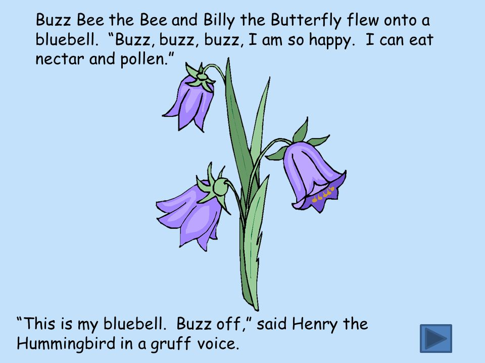 Buzz Bee the Bee and Billy the Butterfly flew onto a bluebell