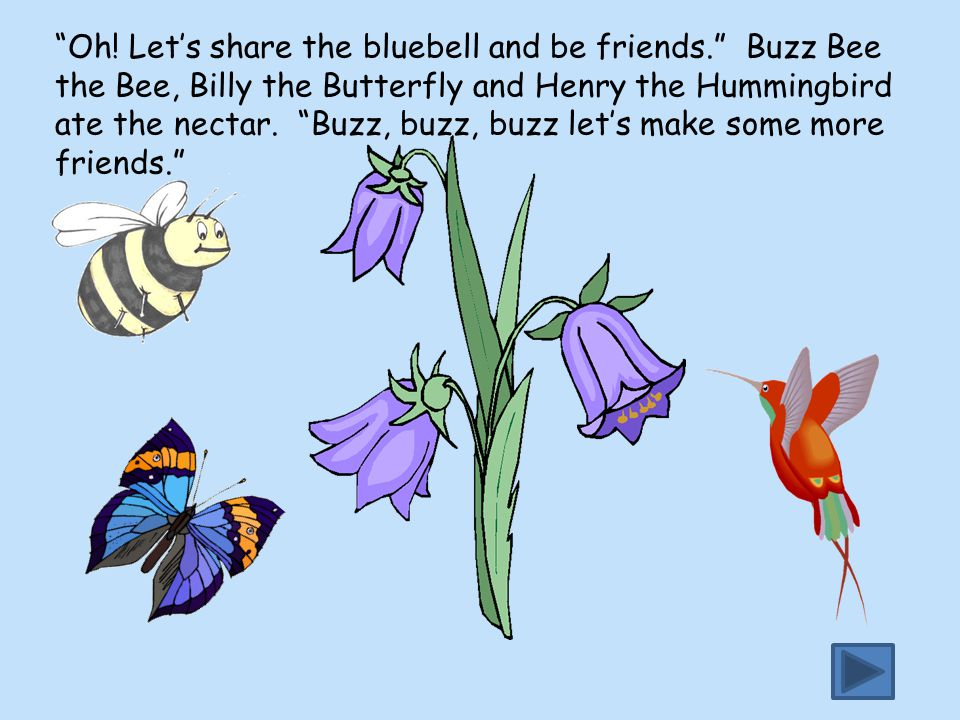 Oh. Let's share the bluebell and be friends