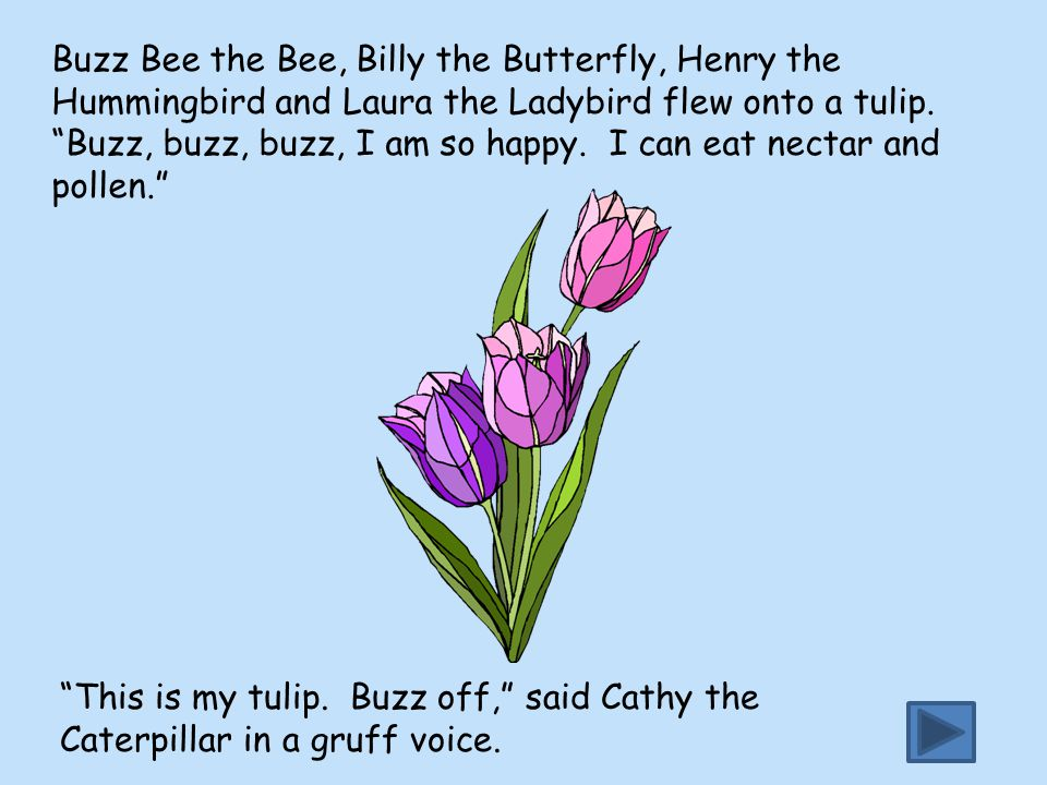 Buzz Bee the Bee, Billy the Butterfly, Henry the Hummingbird and Laura the Ladybird flew onto a tulip. Buzz, buzz, buzz, I am so happy. I can eat nectar and pollen.