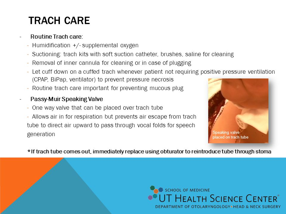 Trach care Routine Trach care: Humidification +/- supplemental oxygen