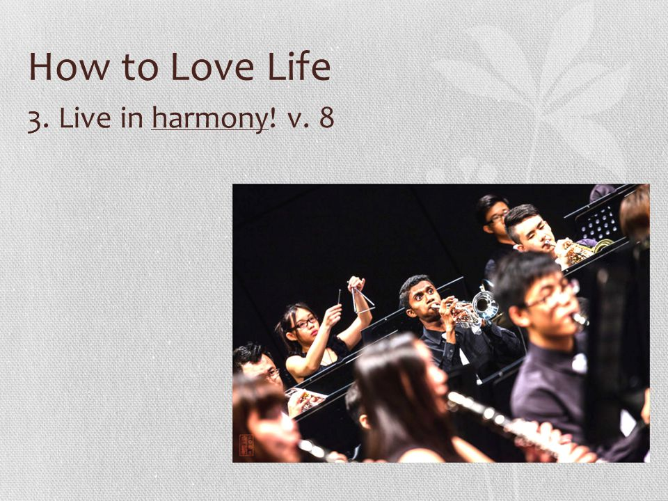 How to Love Life 3. Live in harmony! v. 8