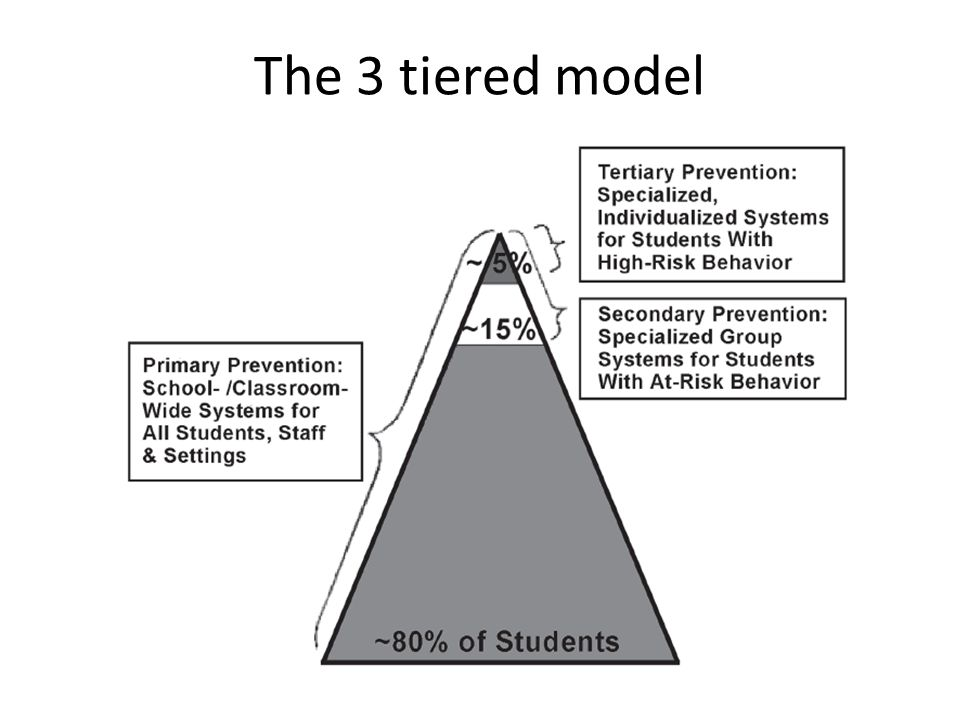 The 3 tiered model
