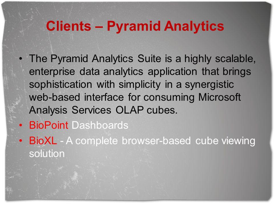 Clients – Pyramid Analytics