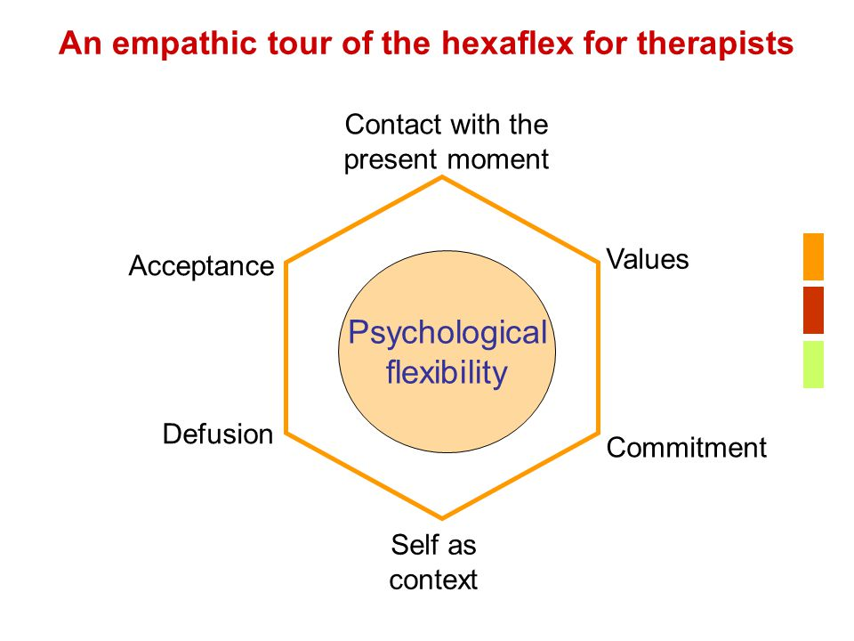 An empathic tour of the hexaflex for therapists
