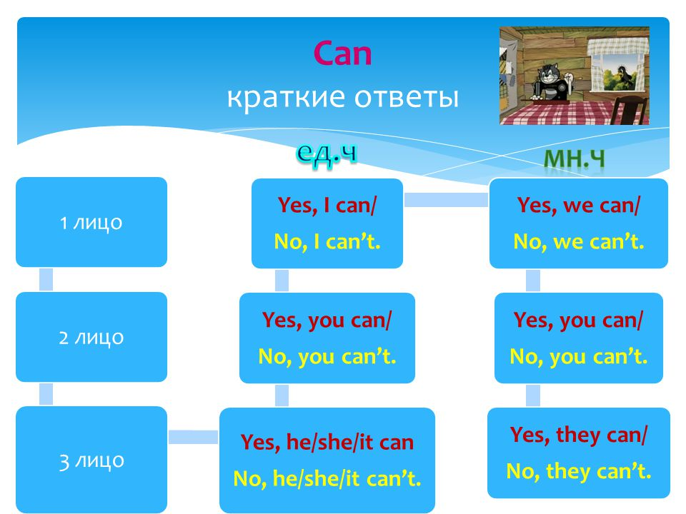 Can краткие ответы 1 лицо 2 лицо 3 лицо Yes, he/she/it can