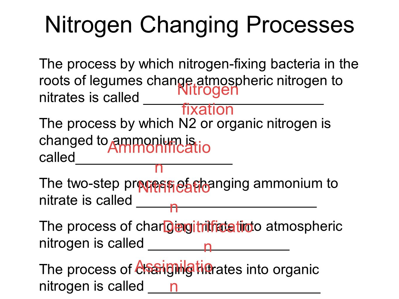 Nitrogen Changing Processes