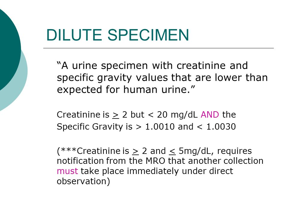 DILUTE SPECIMEN A urine specimen with creatinine and specific gravity values that are lower than expected for human urine.