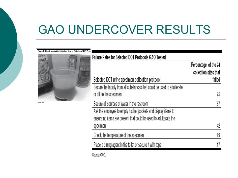 GAO UNDERCOVER RESULTS