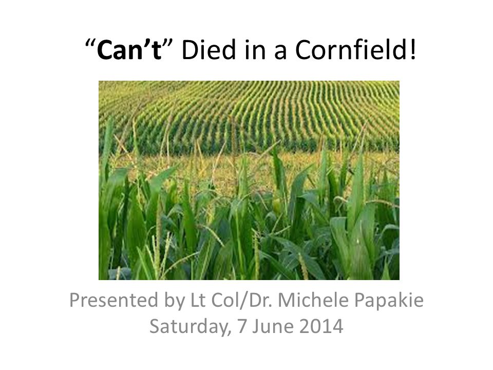 Can't Died in a Cornfield!