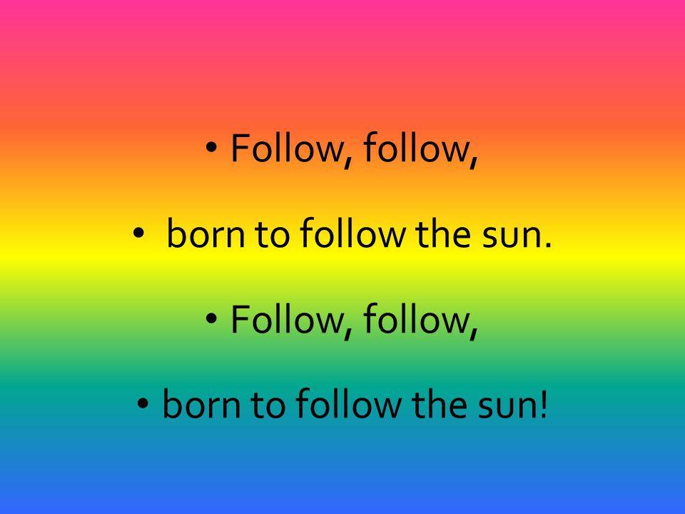 Follow, follow, born to follow the sun. born to follow the sun!
