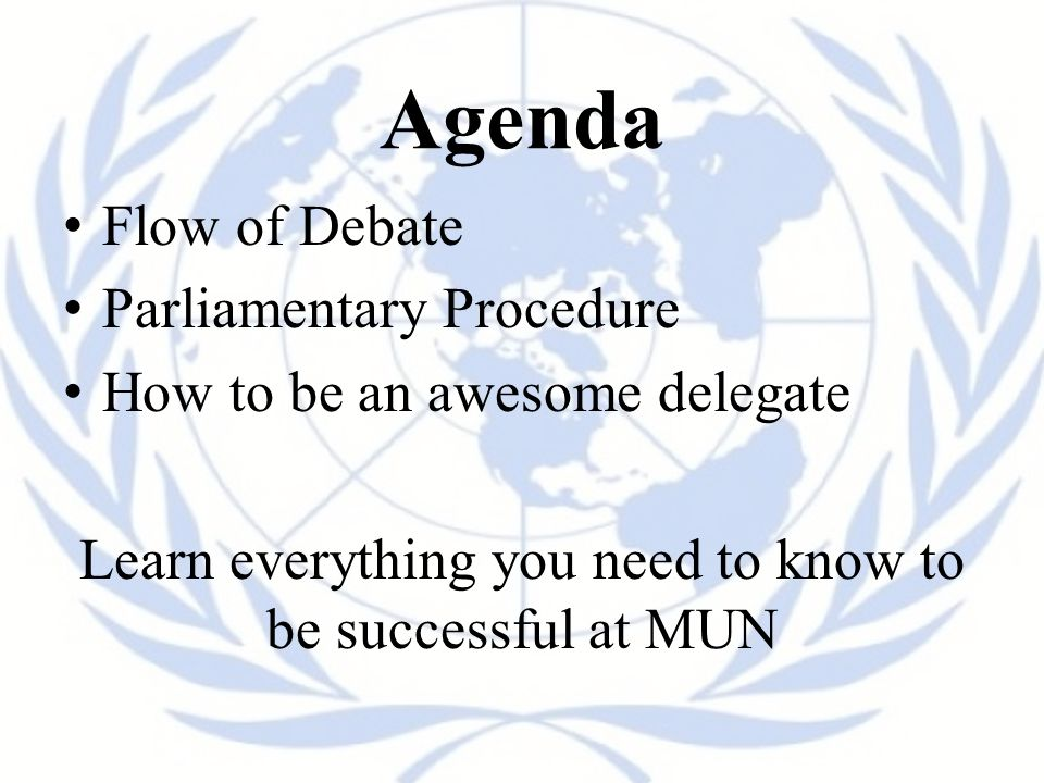 Learn everything you need to know to be successful at MUN