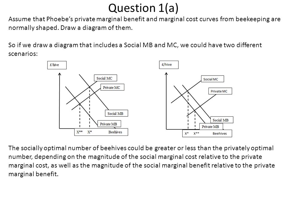 Question 1(a) Assume that Phoebe's private marginal benefit and marginal cost curves from beekeeping are normally shaped. Draw a diagram of them.