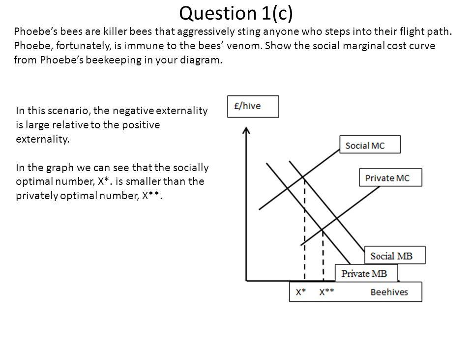 Question 1(c)
