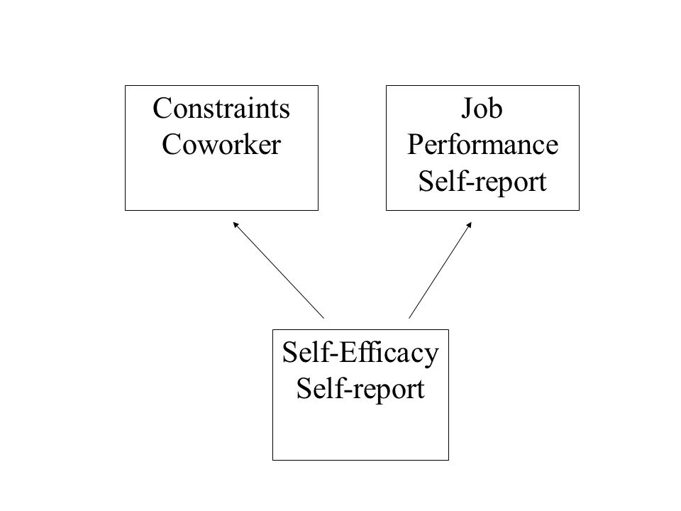 Constraints Coworker Job Performance Self-report Self-Efficacy Self-report