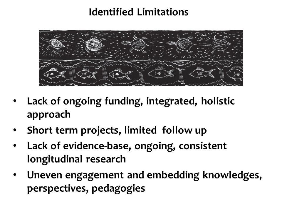 Identified Limitations
