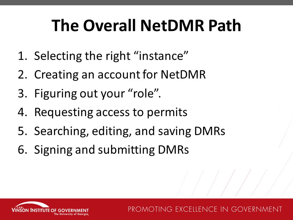 The Overall NetDMR Path