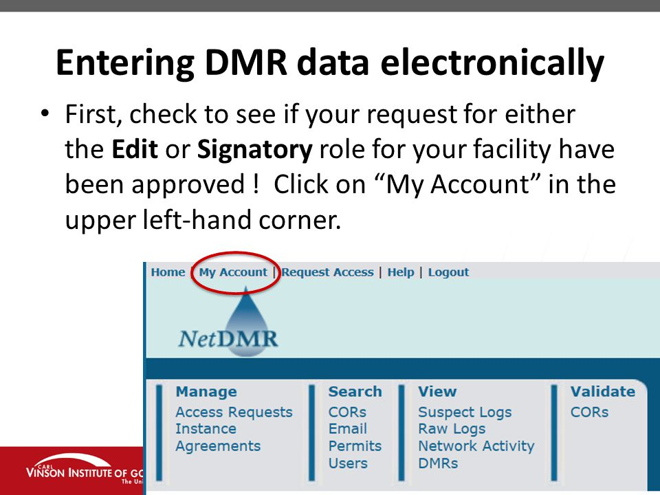 Entering DMR data electronically