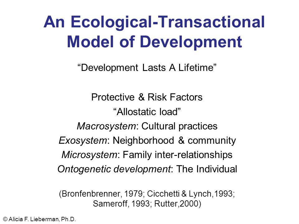 An Ecological-Transactional Model of Development